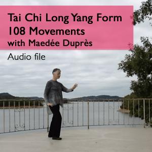 T'ai Chi Ch'üan Long Yang Form
