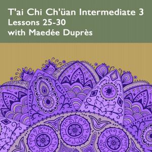 T'ai Chi Ch'üan Intermediate 3